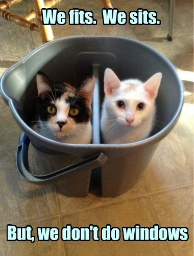 if it fits i sits maid bucket funny - 7701416960