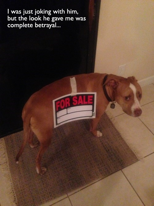 Sad just kidding for sale funny betrayal