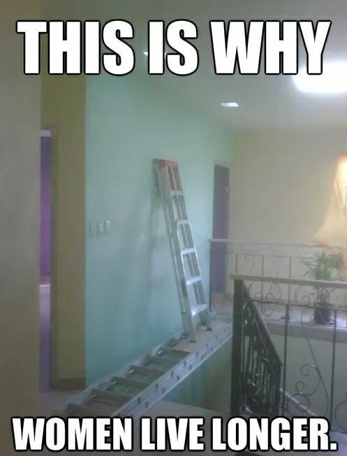 guys,ladders