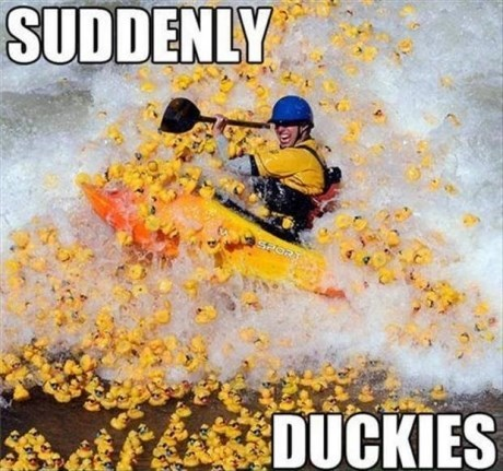 duckies,rapids,IRL