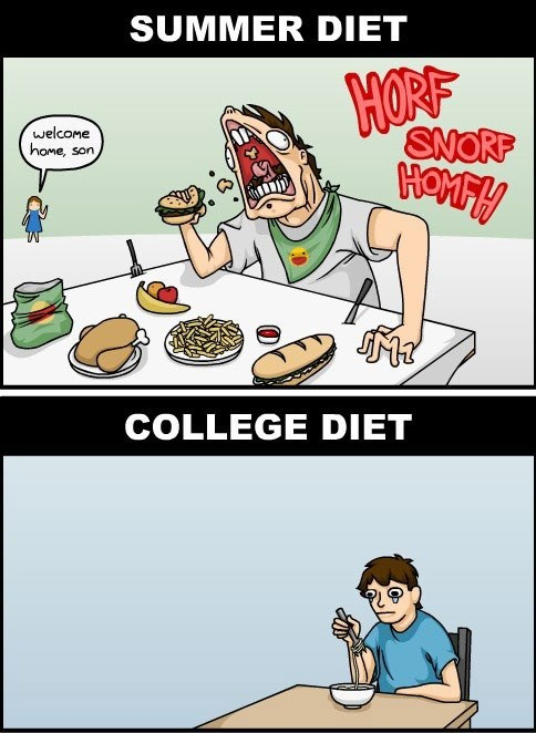 summer comics diets food college web comics