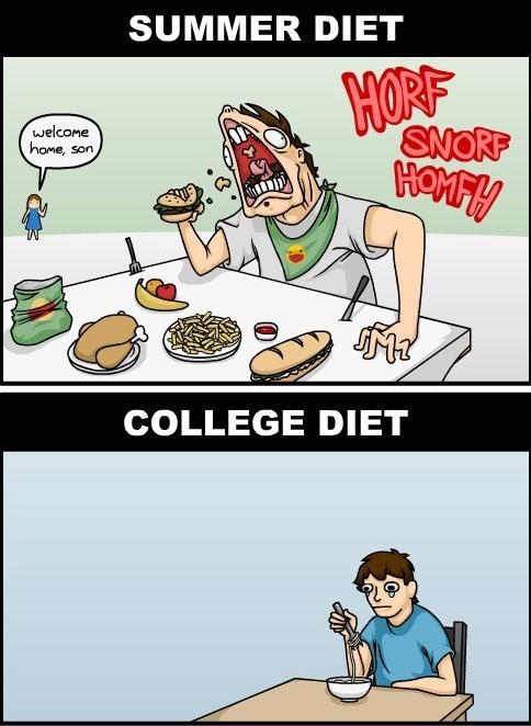 summer comics diets food college web comics - 7702160640