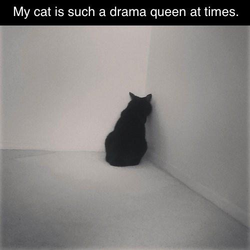 pout Drama Queen funny corner - 7702269696