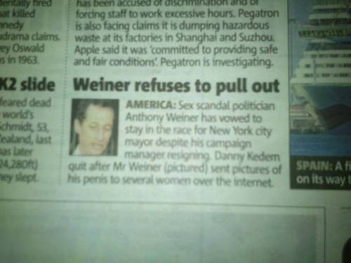 puns headlines Anthony Weiner funny - 7704133632