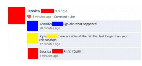 rollercoaster,sick burn,relationships,fair rides,failbook