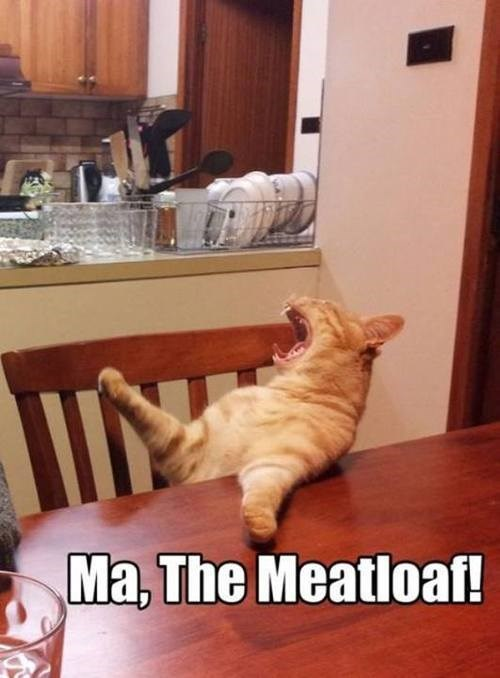 ma yelling meatloaf funny - 7704457472