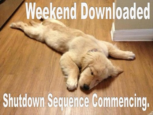 FRIDAY,sleep,weekend,shutdown,funny