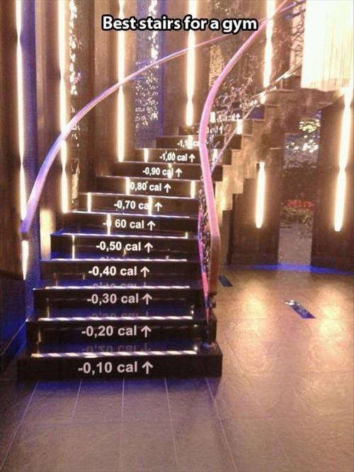 calories exercise gyms