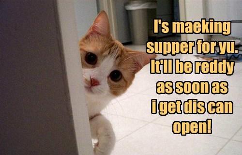 tuna dinner can opener funny - 7708173312