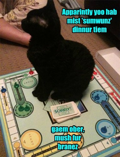 game,dinner time,sorry,interruption,Cats