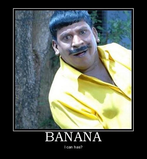 mustache banana idiots funny - 7710238464