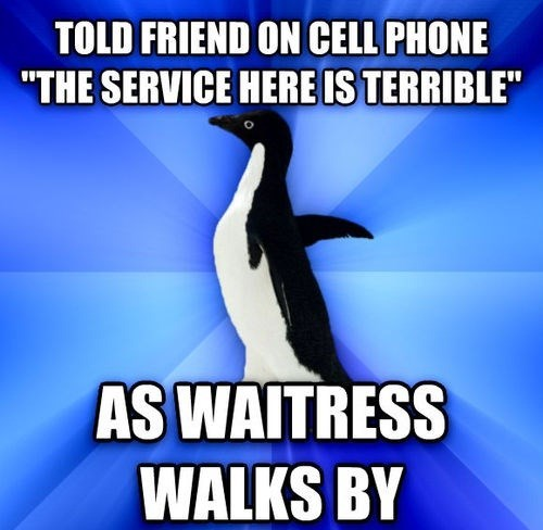 socially awkward penguin restaurants - 7710327040