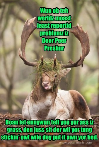 Wun ob teh werldz moast least reportid problumz iz Deer Peer Preshur Doan let ennywun tell yoo yor ass iz grass, den juss sit der wif yor tung stickin' owt wile dey put it awn yor hed.