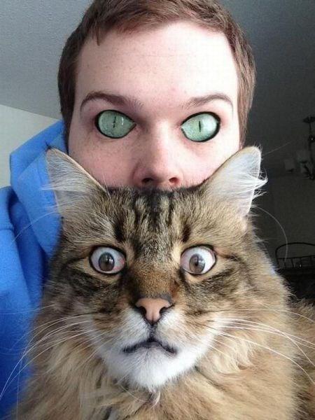 wtf pets eyes Cats funny - 7712607232