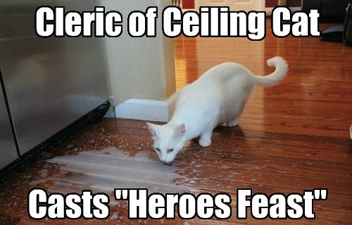 cleric ceiling cat funny dungeons and dragons - 7712860160