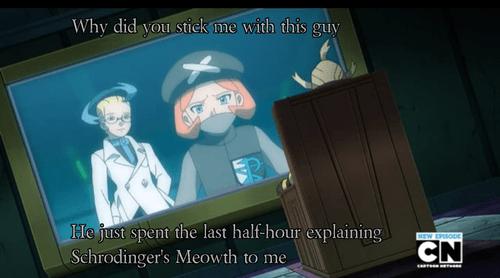colress anime schrodinger's meowth - 7713033728