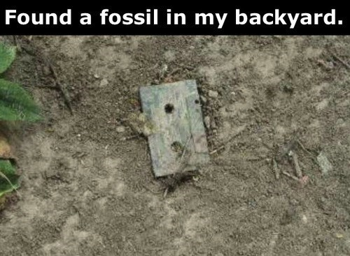 nostalgia cassettes fossils - 7713124096