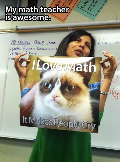 Grumpy Cat,school,math