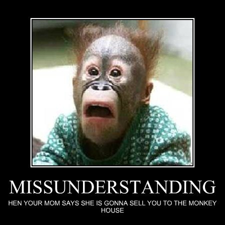 MISSUNDERSTANDING