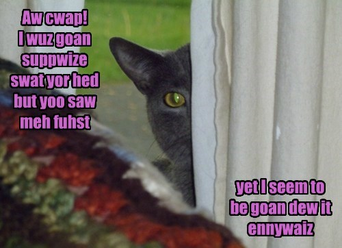 Aw cwap! I wuz goan suppwize swat yor hed but yoo saw meh fuhst yet I seem to be goan dew it ennywaiz