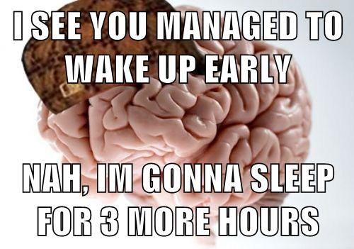 scumbag brain sleeping - 7715133696
