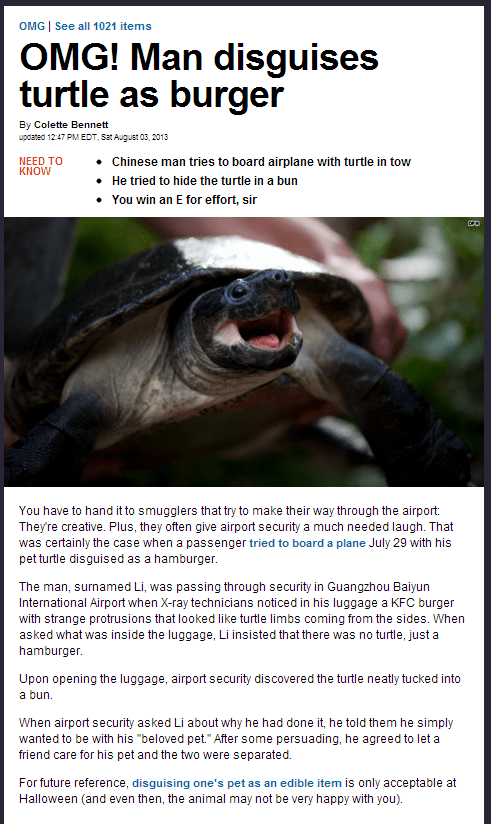 news,turtles,animals