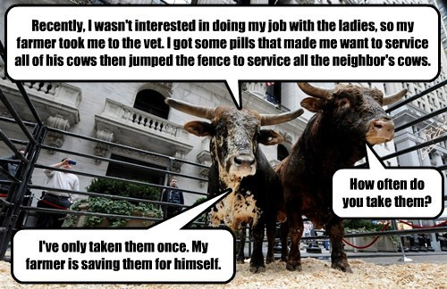 Recently, I wasn't interested in doing my job with the ladies, so my farmer took me to the vet. I got some pills that made me want to service all of his cows then jumped the fence to service all the neighbor's cows. How often do you take them? I've only taken them once. My farmer is saving them for himself.