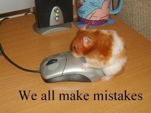 mistakes,mice,animals,dating