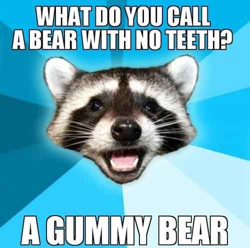 bears gums puns - 7717514496