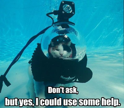 scuba sos dont-ask help funny - 7718299904