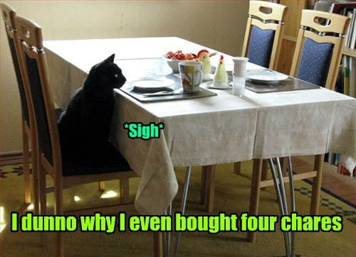 table chairs food funny - 7718594304
