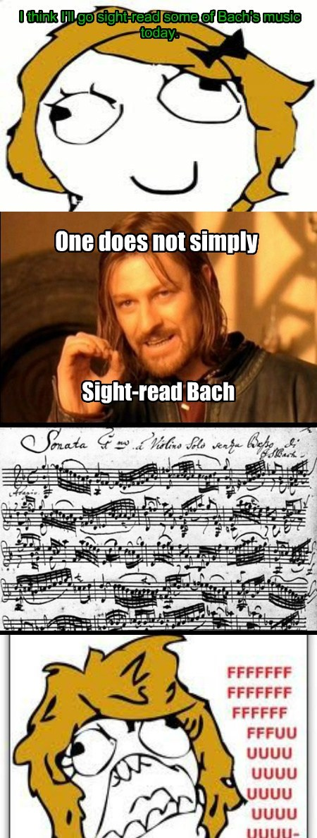 rage Music Boromir Bach funny - 7718821888