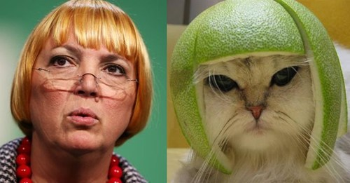 Lime Cat totally looks like claudia roth funny - 7719615232