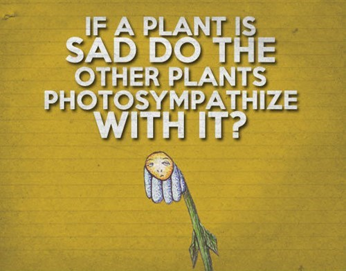 photosynthesis pun photosympathize sympathize plant - 7719774976