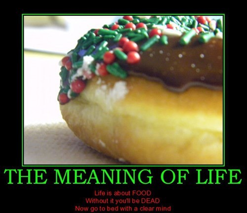donut meaning of life food funny - 7720075008