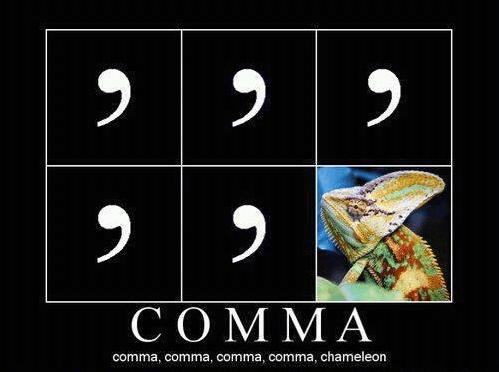 chameleon lizard comma funny - 7720150784