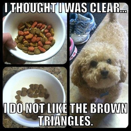 obstinate dog food funny - 7720439296