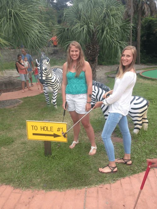photobomb,family,zebras,miniature golf,funny,minigolf