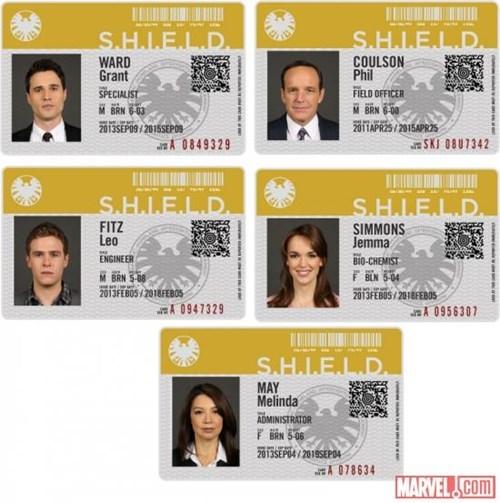 s-h-i-e-l-d TV whedonverse avengers - 7722141184