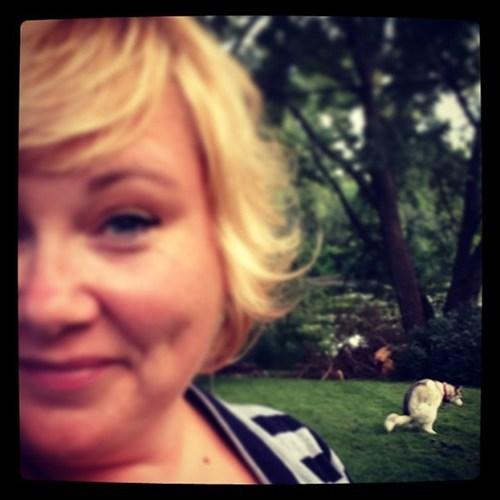 photobomb dogs selfie funny - 7722695168