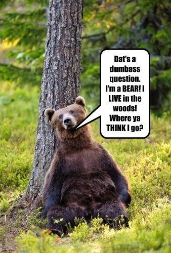 Dat's a dumbass question. I'm a BEAR! I LIVE in the woods! Where ya THINK I go?