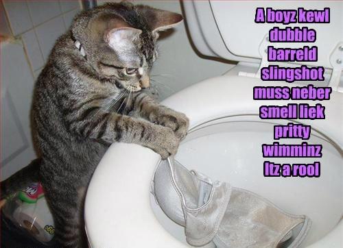 bra,toilet,mischief,funny