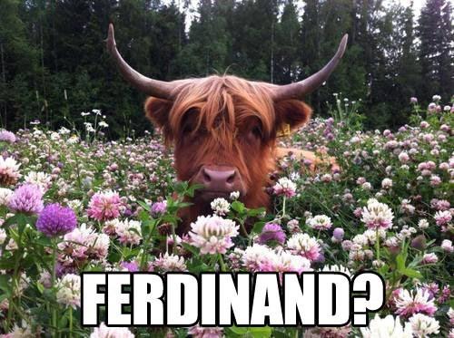 ferdinand book funny - 7724390656