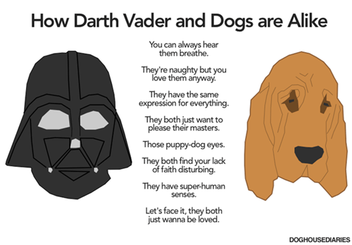 hotdog star wars dogs darth vader - 7726033408