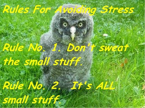 Rules For Avoiding Stress Rule No. 1. Don't sweat the small stuff. Rule No. 2. It's ALL small stuff.