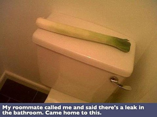 puns leek leak - 7726137088
