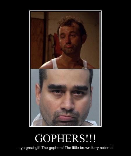 gophers caddyshack derek medina bill murry - 7727942912