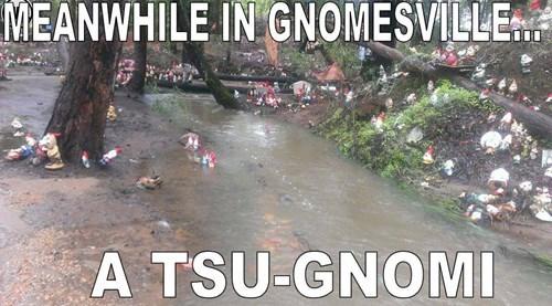 pun,Tsunami,gnomes