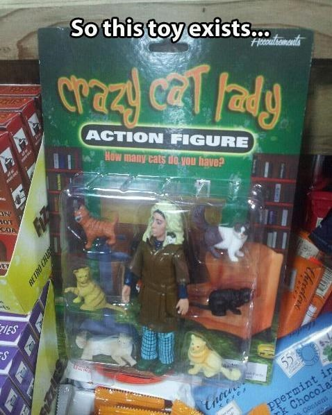 crazy cat lady,toys,funny,g rated,dating
