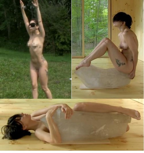 kickstarter naked lady gaga Performance Art - 7728129280